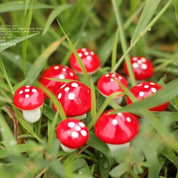 10pcs Red Miniature Mushroom Dollhouse Bonsai Fairy Garden Ornaments