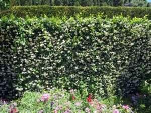 blog spain exproring alhambra