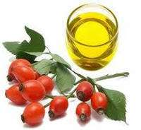 Cosmetics Rosehip essential Oil against skin aging