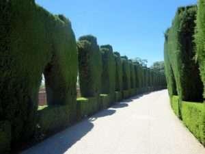 blog exproring spain alhambra