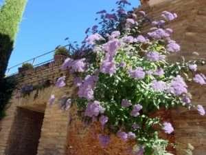 alhambra exproring spain blog
