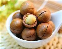 Cosmetics Macadamia Nut essential Oil for mature Skin