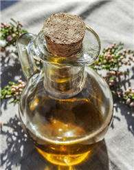 avocado oil skin essential cosmetics